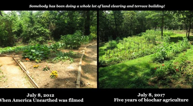 "THE ""AMERICA UNEARTHED"" GARDEN . . . FIVE YEARS LATER"
